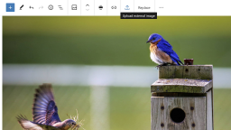 Gutenberg 8.5 Adds Single Gallery Image Editing, Allows Image Uploads From External Sources, and Improves Drag and Drop