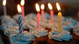 Happy 17th, WordPress