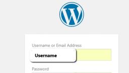 [ONLINE] Los básicos de una instalación de WordPress