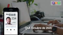 234   Recopilación de respuestas sobre WooCommerce, themes y planificación