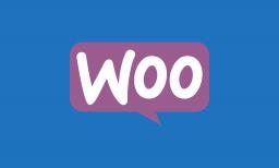 210. WooCommerce con miles de productos