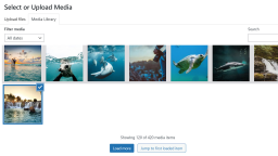 WordPress 5.8 Media Library Changes You Should Know About