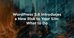 WordPress 5.6 Introduces a New Risk to Your Site: What to Do