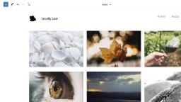 Exploring Photo Blocks, an Experimental FSE-Ready Photoblogging Theme